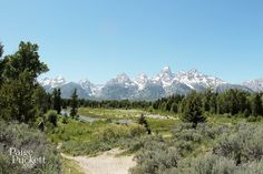 Schwabacher Landing was a spot that grabbed our interest when we initially sketched out a loose itinerary. On the drive into the Tetons, we spotted the sign for a pull-off and, at the end of a gravel road, came across this beautiful view. It wasn't crowded, as we had the river to ourselves, but down in the gravel lot there was an artist with an easel behind her truck and several fly fisherman coming and going from somewhere downstream.