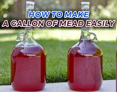 How to Make a Delicious, Fruity Homemade Mead Mead is considered by many to be one of the oldest, if not the first, fermented drink produced by humans. It is very easy to make, you can use a varie… Brewing Recipes, Homebrew Recipes, Beer Recipes, Homemade Wine Recipes, Mead Wine Recipes, Fermentation Recipes, Homemade Alcohol, Homemade Liquor, Wine And Liquor