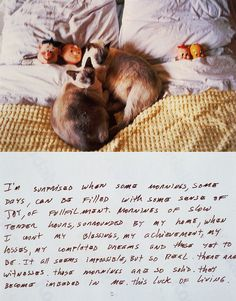 """""""This luck of living"""" Felix Gonzalez-Torres snapshot"""