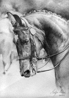 dressage horse tattoos - Google Search