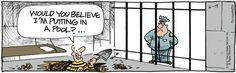 jail  :-D:-D:-D