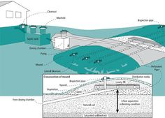 --- Landscaping septic systems : Yard and Garden : Garden : University of Minnesota Extension   http://www.extension.umn.edu/garden/yard-garden/landscaping/landscaping-septic-systems/