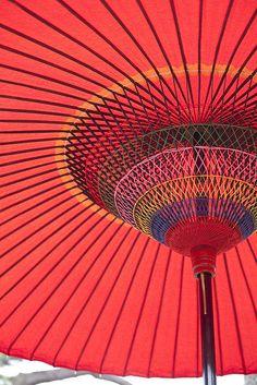 日本古来の傘をさしながら鑑賞にひたるHulu(フールー)、最高。