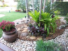 Notice color options, can play with patterns in different colored rocks.  For side yard.