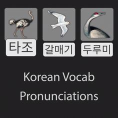 These are the native Korean pronunciations for ostrich, seagull, and crane (the bird). Korean Language Learning, Language Lessons, Learn Korean Alphabet, Korean Writing, Korean Lessons, Funny Prank Videos, Korean Words, Design Language, Linguine