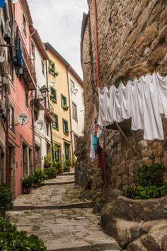 Balade insolite à Porto : Que voir ? Que faire ? Nos bonnes adresses des quartiers fontainhas à miragaia en passant par la ribeira