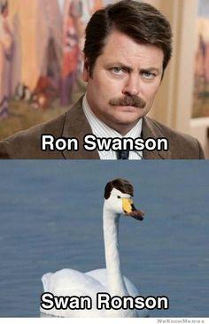 Ron Swanson / Swan Ronson