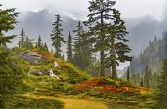 """Another rainy day in the Mt. Baker National Forest in Washington State...  There is a reason that they call Washington State the """"Evergreen"""" State...  www.loupho.com"""