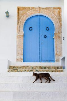 Tunis,Tunisia (Walter Bibikow)