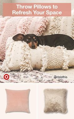 Throw pillows are an easy way to update your space. Try a variety of cozy textures, like faux fur & knit. Animals And Pets, Baby Animals, Funny Animals, Cute Animals, Cute Puppies, Cute Dogs, Dogs And Puppies, Dachshund Love, Daschund