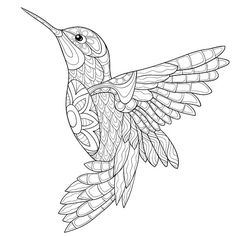 Adult coloring page an humming-bird