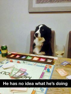 How I feel playing monopoly