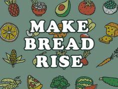 Make Bread Rise - YouTube