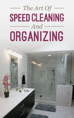 FREE ebook: The Art Of Speed Cleaning And Organizing: How To Organize, Clean, And Keep Your House Spotless