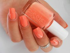 Passion for summer corals.