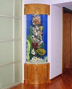 corner fish tank - Google Search