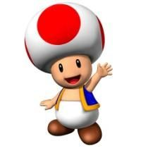 Toad from Super Mario Bros Wii(67545)