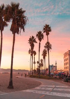 Pink sunset at Venice Beach, Los Angeles, California. Pink sunset at Venice Beach, Los Angeles, California. Venice Beach California, California Camping, Visit California, California Palm Trees, Santa Monica California, California Sunset, Los Angeles Wallpaper, Camping Photography, Tree Photography