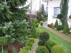 Sidewalk, Plants, Flora, Plant, Pavement, Curb Appeal