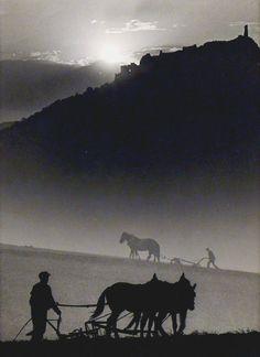 Dulovits Jenő, Ploughing, 1935.