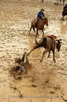 ❦ Stanthorpe Rodeo - Face plant...spa loosh:-)
