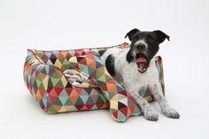 """Hello world......mein Rezept gegen den Monday Blues: ein Knall - Boooom - Bäääng buntes Hundekörbchen, was ich direkt auf den Namen """"Harlekin"""" getauft habe :-) WAU! Bin ich heute kreativ & gut drauf! :-) Euer Mücke   #Design #Dogs in the City #Handarbeit #Hundebett #Hundekorb #Hundekörbchen #Hundesofa #Luxus"""