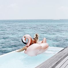Metallic pink swan and infinite pool picture. Summer pool days