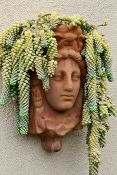 Graceful Planter A living headdress of donkey's-tail sedum (S. morganianum), a succulent, drapes gracefully from the top of this wall-hung figural planter. Succulent Gardening, Cacti And Succulents, Planting Succulents, Container Gardening, Planting Flowers, Succulent Wall Planter, Head Planters, Garden Planters, Garden Art