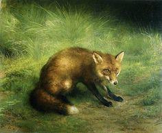 Rosa Bonheur - A Fox -
