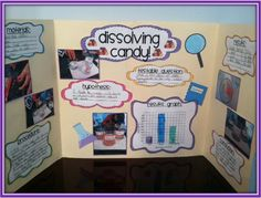 FREE!!! Science project labels. Great idea for science fair displays!