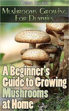 Mushrooms Growing For Dummies: A Beginner's Guide to Growing Mushrooms at Home: . Growing Mushrooms At Home, Garden Mushrooms, Edible Mushrooms, Stuffed Mushrooms, Backyard Chicken Coops, Backyard Farming, Chickens Backyard, Mushroom Grow Kit, Mushroom Spores