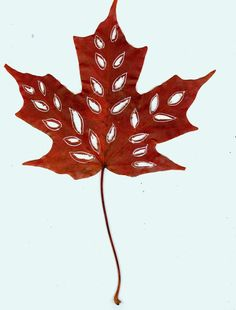 Dharmakarmaarts: Leaf Art in Autumn Leaf Crafts, Fall Crafts, Diy And Crafts, Arts And Crafts, Autumn Leaves Craft, Autumn Art, Flower Collage, Flower Art, Dry Leaf Art