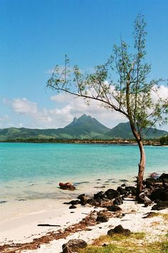 ✮ An isolated beach on Ile aux Cerfs (Isle of Stags), looking across a shallow lagoon to the mainland of Mauritus