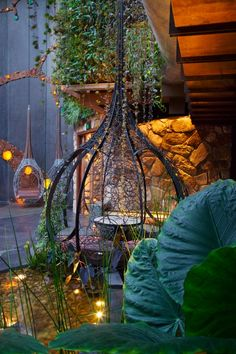 cloudland club in brisbane australia green hospitality garden