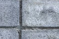 the cement wall