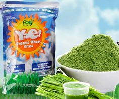 Add the power of pro-biotics and more to your health regimen with a FREE sample of Yae! Organic Wheat Grass Powder