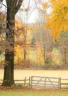 October On The Farm (