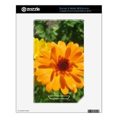 Calendula Trio Photo Skins For NOOK Color by Anstey