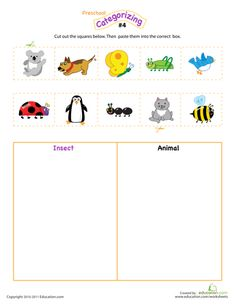 Count, Sort and Classify | Printable Workbook | Education.com