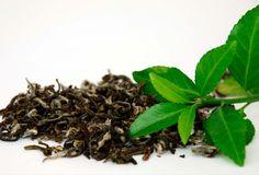Resultado de imagen de hojas de té