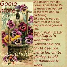 Goeie More Good Morning Good Night, Good Morning Wishes, Morning Messages, Good Morning Quotes, Psalm 118, Psalms, Afternoon Quotes, Blessed Week, Evening Greetings