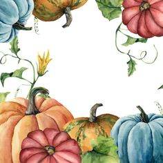 Watercolor autumn card with pumpkin. Hand painted pumpkin print with flower, leaves and branch isolated on white background. Botanical illustration for design or background. Pumpkin Flower, Pumpkin Art, Watercolor Fruit, Watercolor Journal, Botanical Illustration, Illustration Art, Fall Clip Art, Autumn Art, Butterfly Art