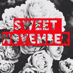 November .. Quotes Sweet November, November 17, Dear Daughter, My Beautiful Daughter, Months In A Year, Days Of The Year, November Quotes, Scorpio Girl, Sagittarius