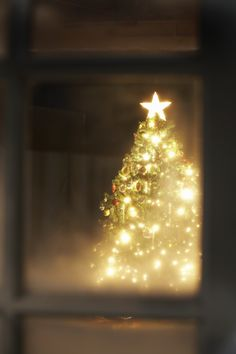 #christmas #tree #window❄
