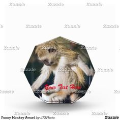 Shop Funny Monkey Award created by JFJPhoto. Showcase Design, Printing Process, Monkey, Awards, Vibrant, Funny, Color, Jumpsuit, Colour