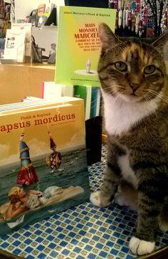 Le chat de l'Orange Bleue... avec les éditions Plonk & Replonk