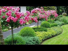 48 Fresh And Beautiful Front Yard Landscaping Ideas - Alles für den Garten Acreage Landscaping, Front Yard Landscaping, Landscaping Ideas, Outdoor Landscaping, Shade Landscaping, Backyard Ideas, Outdoor Decor, Small Gardens, Outdoor Gardens