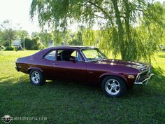 1972 Chevy Nova. Makes me miss the Mean Green No-Go Machine...I will have one eventually and it will be this color or orange.
