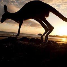 Amazing shot......Byron Bay - Australia