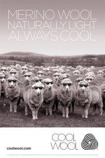 Wool. Wool is cool!